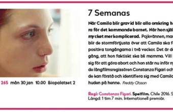 7 Semanas se estrena en el Festival de Gotemburgo