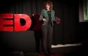 TED 1, foto SBralic