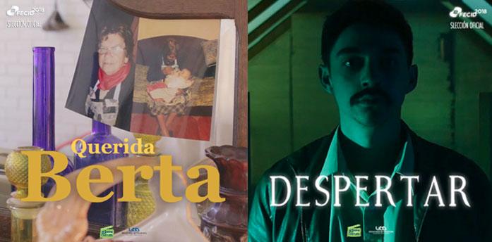 Festival de Cine de Las Ideas